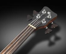 Warwick-new-machineheads-fretless